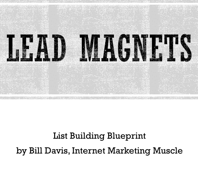 email-list-building-lead-magnets-presentation