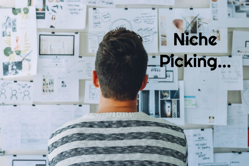 how to pick a niche